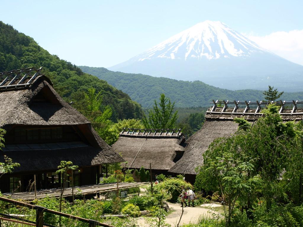 Mt. Fuji & Iyashinosato Nenba