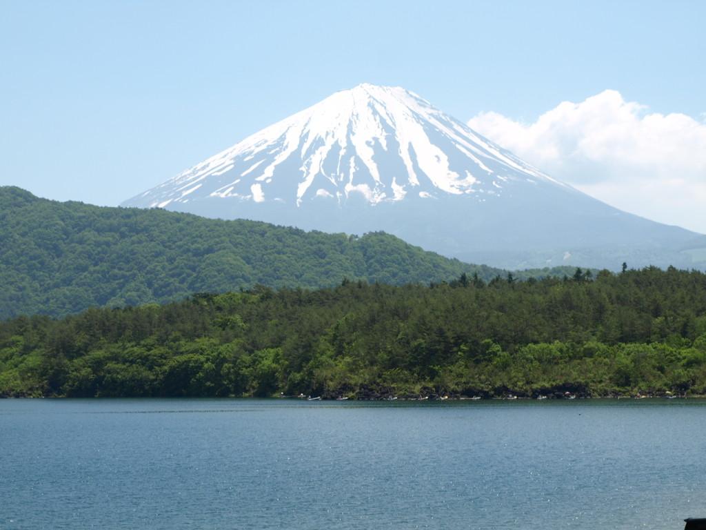 Lake Saiko & Mt. Fuji