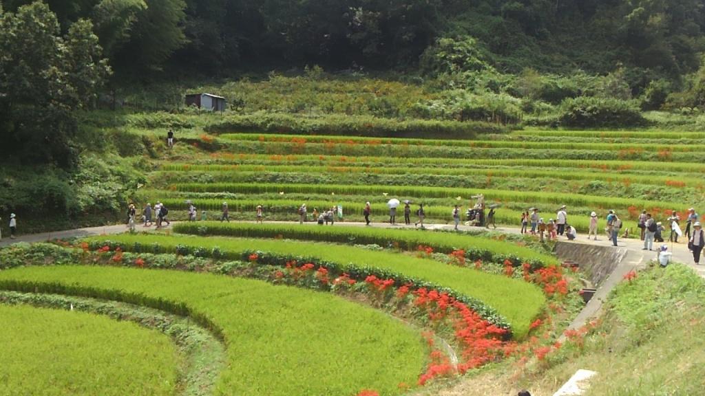 Asuka, Nara Prefecture