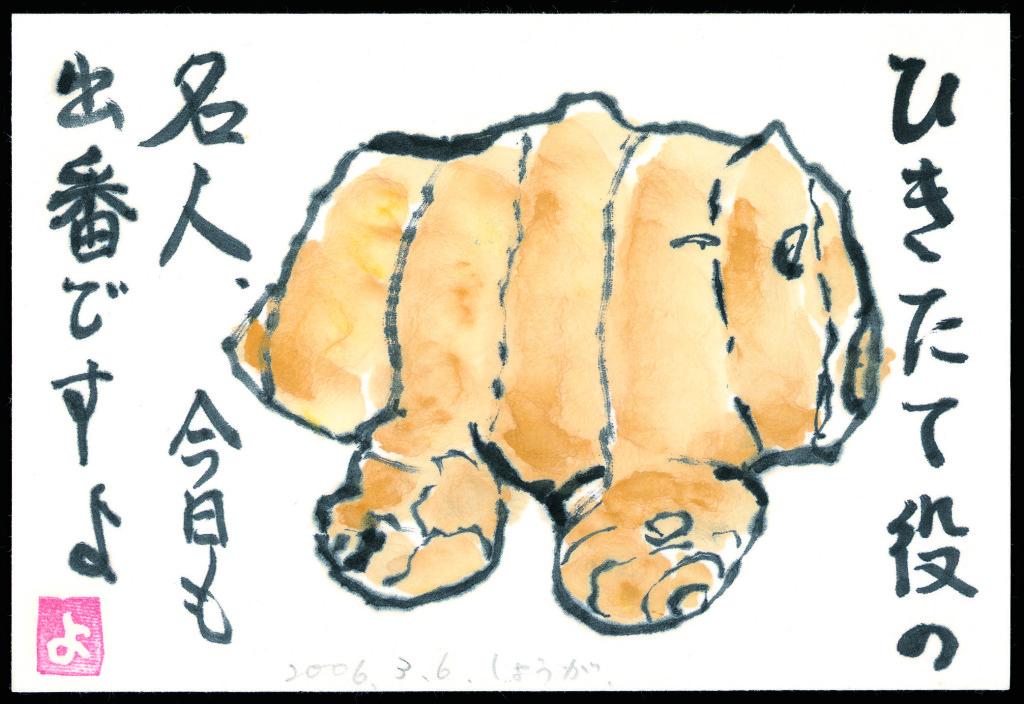 絵手紙生姜